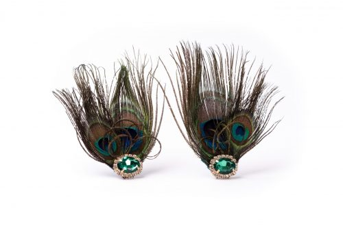 Peacock Plume Shoe Clips
